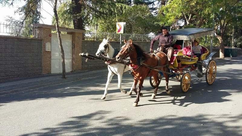 超详细的伊斯坦布尔旅游攻略指南(含图文视频)|伊斯坦堡 28