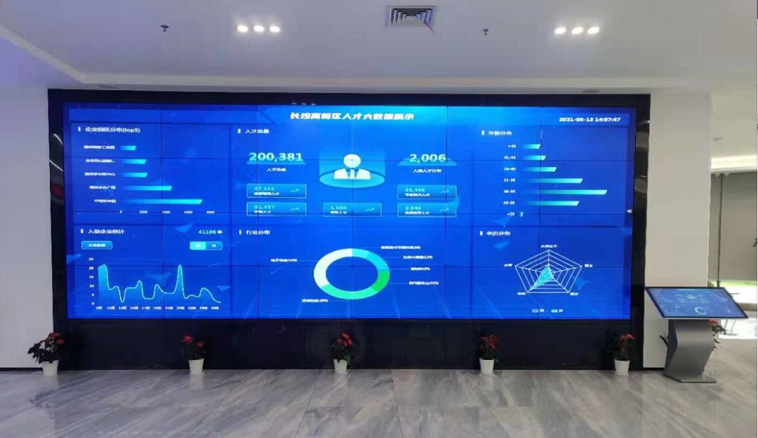长沙市委常委组织部长张宏益一行调研今日人才开发的人才大数据平台